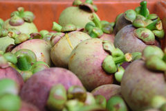 Mangostanfrucht in der Kiste Stockfoto