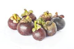 Mangostanfrucht gesetzt mit weißem Hintergrund Lizenzfreies Stockbild