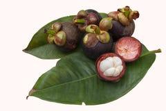 Mangostanfrucht ist die K?nigin von den Fr?chten, die auf wei?em Hintergrund lokalisiert werden S??er Geschmack k?stlich lizenzfreie stockfotografie