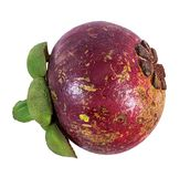 Mangostanfrucht lokalisiert auf Weiß Stockfotografie