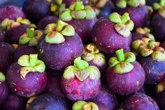 Mangostanfrucht in Thailand lizenzfreies stockbild