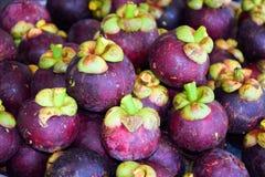 Mangostanfrucht in Thailand stockfotos