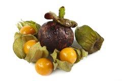 Mangostanfrucht und Physalis Stockfotografie