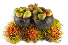 Mangostanfrucht und Rambutan sind eine von köstlicher thailändischer Frucht auf Weiß stockfotos