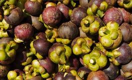 Mangostanfruchtfrüchte Stockfoto