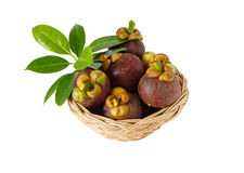 Mangostanfruit in mand op witte achtergrond Stock Afbeeldingen