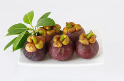 Mangostanfruit op plaat witte achtergrond Royalty-vrije Stock Afbeeldingen