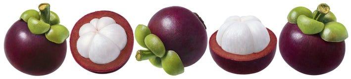Mangostanu set Kilka opcje odizolowywać na białym backg owoc Obraz Stock