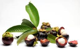 Mangostanvruchten Stock Afbeelding