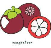 Mangosteen χρωματίζοντας σελίδα φρούτων Γραφικό διανυσματικό ζωηρόχρωμο doodle α Στοκ Εικόνες