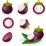 Mangosteen Royalty Free Stock Photography