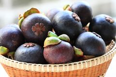 Mangosteen Stock Photo