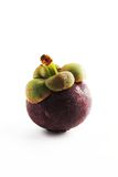 Mangosteen royalty free stock photo