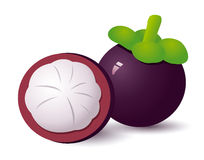 Mangosteen Stock Photography