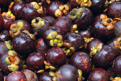 Mangosteen. The background of Mangosteen. Scientific name: Garcinia mangostana royalty free stock photo