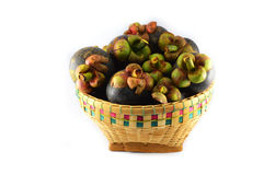 Mangosteen in the basket Royalty Free Stock Image