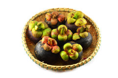 Mangosteen in the basket Stock Images