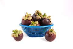 Mangosteen  in basket on white background Royalty Free Stock Photos