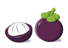 Mangosteen Stock Images