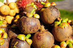 Mangosteen fruit Stock Photo