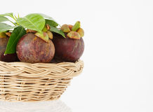 Mangosteen fruit in basket on white background. Mangosteen fruit in basket isolated and white background Royalty Free Stock Images