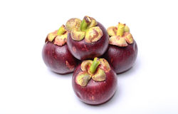 Mangosteen. Fruit with a bright white background Stock Photos