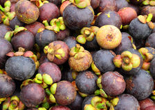 Mangosteen fruit pile Stock Photography
