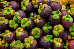 Mangosteen fruit on sales Royalty Free Stock Photos