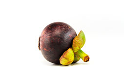 Mangosteen. Fruit  showing the thick purple skin and white flesh of the queen of fruits Royalty Free Stock Photos