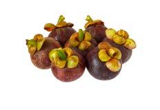 Mangosteen fruit on white background. Mangosteen fruit isoalted on white background royalty free stock photo