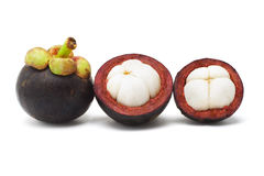 Mangosteen fruits Stock Photography