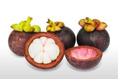 Mangosteen fruits Stock Photo