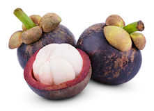 Mangosteen fruits Stock Images