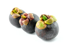 Mangosteen fruits on isolated background Royalty Free Stock Image