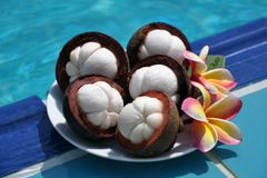 Mangosteen (Garcinia mangostana) Royalty Free Stock Photos