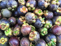 Mangosteen. Group of mangosteen for sale in the market , Thailand Stock Photo