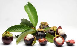 Mangosteen. Group of seasonal tropical mangosteen fruits Royalty Free Stock Photos