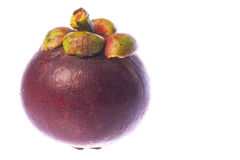 Mangosteen Isolated Stock Photography