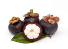 Mangosteen isolated Royalty Free Stock Photo