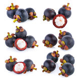 Mangosteen isolated Stock Images