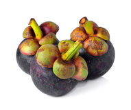 Mangosteen isolated on white Royalty Free Stock Images