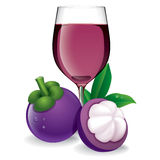 Mangosteen juice vector illustration. Stock Photography