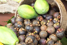 Mangosteen and papaya Royalty Free Stock Image