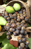 Mangosteen and papaya Royalty Free Stock Photos
