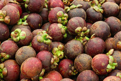Mangosteen Stock Photos