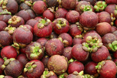 Mangosteen Royalty Free Stock Photos