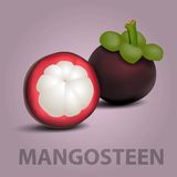 Mangosteen Royalty Free Stock Photography