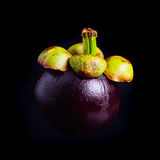 Mangosteen, Queen of fruits. Royalty Free Stock Images