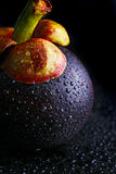 Mangosteen, Queen of fruits. Still Life mangosteens, Queen of fruits Stock Photography