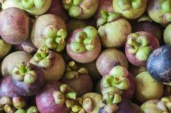 Mangosteen Royalty Free Stock Photo